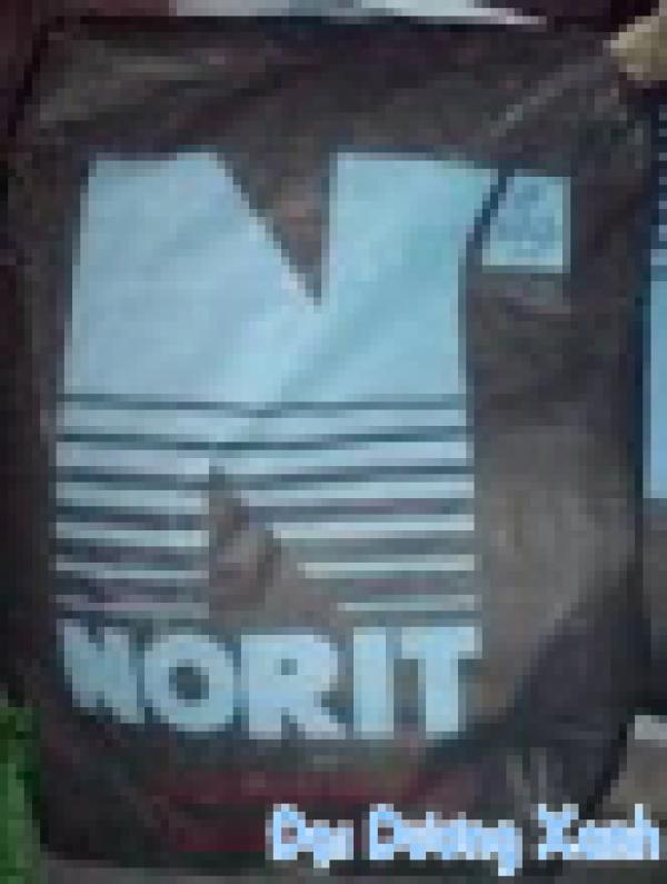 Than hoạt tính Norit Hà Lan nhập khẩu
