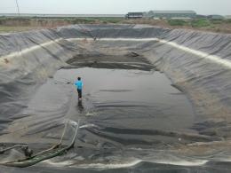 Thi công trải bạt hdpe chống thấm cho hồ chứa nước thải chăn nuôi bò thái bình